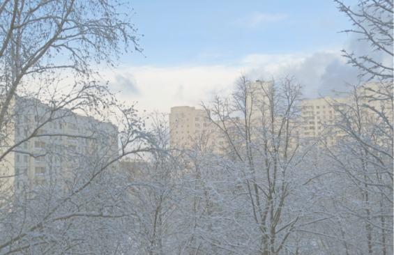 Район Северное Тушино. Ноябрь