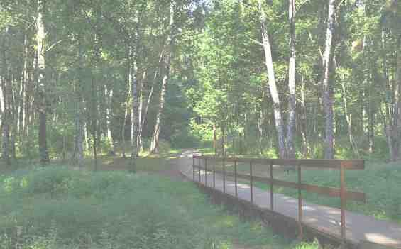 Алешкинский лес раскинулся рядом с ул Вилиса Лациса