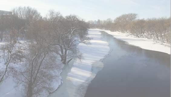 Река Сходня протекает рядом с улицей Василия Петушкова