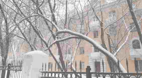 Новопоселковая улица. Февраль  2017 года